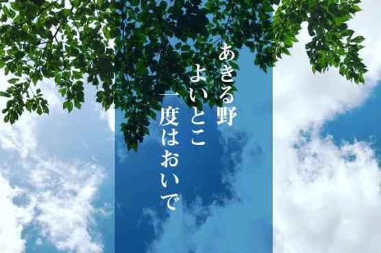 あきる野+ホームページ作成